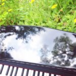 草の上のピアノ