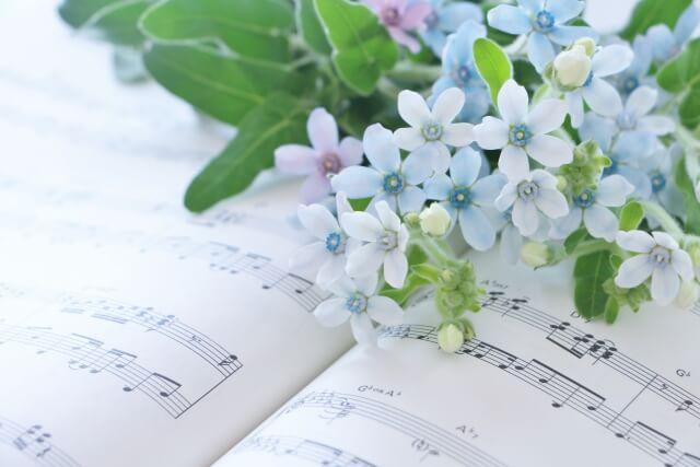 紫陽花と楽譜