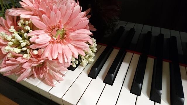 ピアノの鍵盤とガーベラ