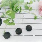 五線譜と花