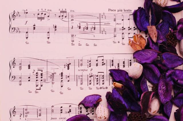 楽譜と花びら